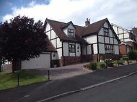 4 Bedroom house to rent in Banbridge - £750 p/m