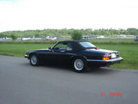 THIS JAGUAR WON'T LAST LONG ON THE MARKET-SPRING IS HERE!