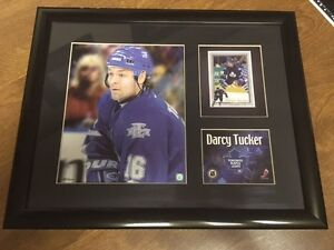Toronto Maple Leafs Darcy Tucker Framed Picture