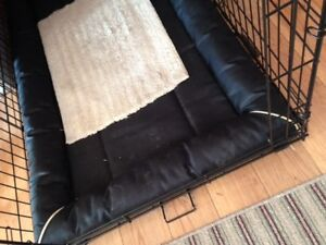 large dog crate and bed plus raised bowls