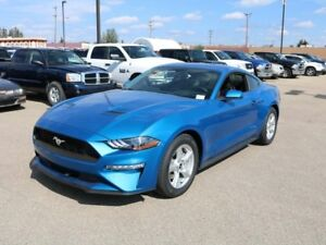 2019 Ford Mustang COUPE, 100A, 2.3L ECOBOOST, RWD, SYNC, REAR CA