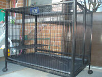 Cage pour petits animaux  /  Cage for small animal   $50.00  NDG