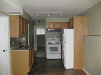 2 Bedroom Apartment - Lower Level (Legally registered with City)