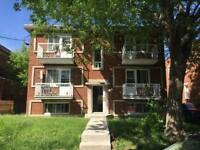 4 1/2 for rent in 6plex in Lachine ! Great price!