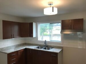 Newly Renovated Townhome on Coldrey Ave, 3 beds, new appliances