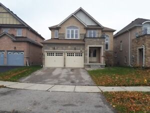 Large four bedroom detached home in Brantford with Hot Tub
