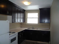 MODERN 1 Bdrm COMPLETELY RENOVATED - Available now REGINA