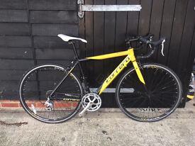 """Carrera TDF Road Bike 54"""" Frame"""
