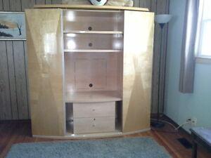 cabinet display tv shelves