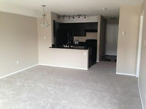 Northside condo for rent