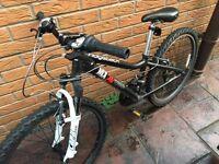 Boys Ridgeback Mountain Bike