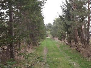 terre à bois, 5e Rang, La Présentation (dc/sd)