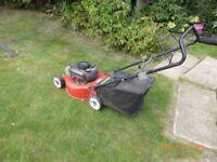Mountfield 48 cm petrol rotary mower seen working .. based Southend