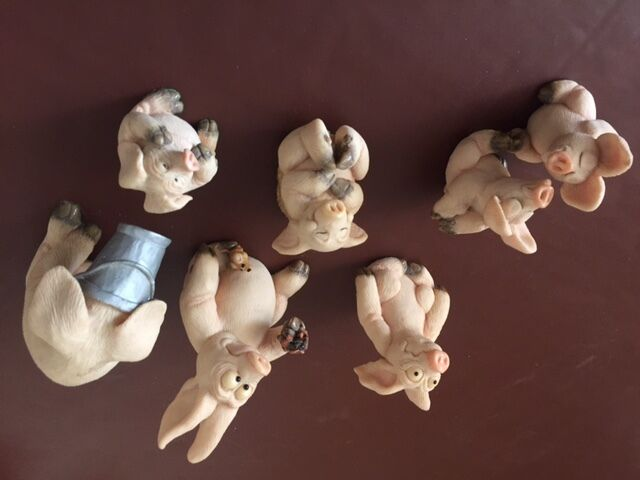 piggins (seven collectible pig ornaments) | in norwich, norfolk