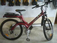 IGO Urban electric bicycle