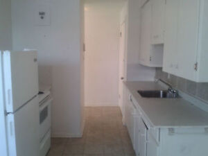 Spacious 1br apartment on Clarence St