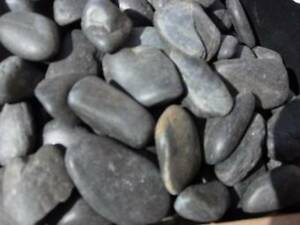 Pebbles Black Polished Imported $20- per bag Taren Point Sutherland Area Preview