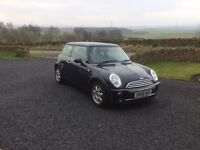 2006 Black limited edition Mini 7