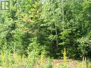 LOT 6 VIBURNUM VALE, MATTAWAN TWP, Ontario   P0H1V0