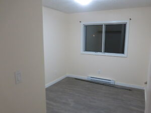 2 Bedroom ground floor apartment for Nov. 1