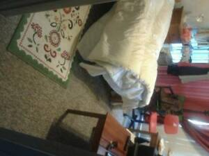 belconnen  master bed with ensuite and single room for rent