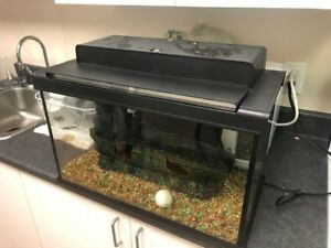 Fish Tank (PRICE REDUCED WON'T LAST LONG!)