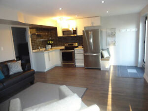 Modern Fully Furnished 1 Bedroom Walkout Basement Apartment