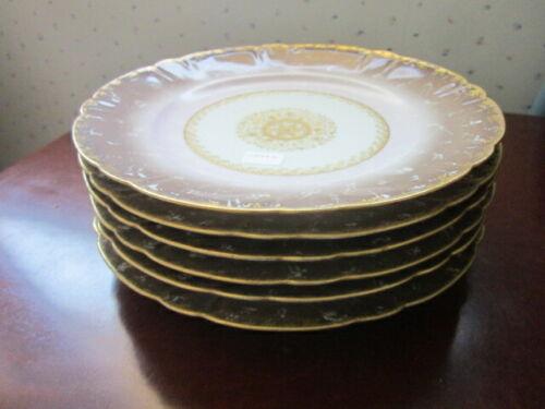 Haviland Limoges set of 6 luncheon plates, circa 1880s