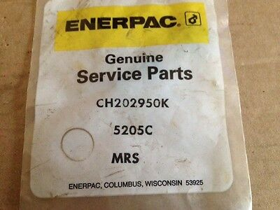 Genuine Oem Enerpac Ch202950k Relief Valve Repair Kit For Pa-1150