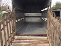 Ifor William livestock trailer