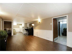 Beautiful lower level apartment in West Mountain