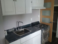 Brand new fully renovated 1 bedroom apartment GROUND LEVEL