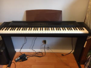 Roland Ep-90 Digital Piano,  McNally Strumstick, Como Guitar