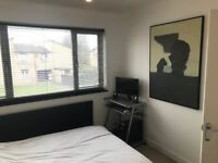 Double Bedroom to Rent, Lovely House, Great Location, 400 pcm (bills included)