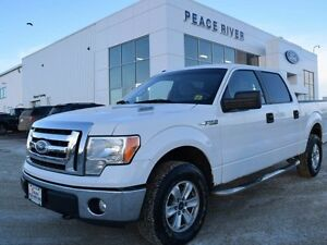 2010 Ford F-150 XLT 4x4 SuperCrew Cab 5.5 ft. box 145 in. WB