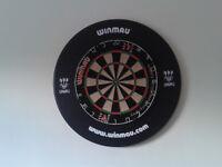 Andy Fordham Viking Edition Dartboard (with darts)