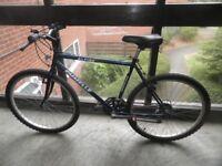 Mountain Bike ( little used )