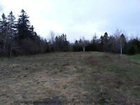 LARGE PRIVATE BUILDING LOT IN GLENMONT-R6 ZONING!