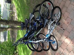 MOUNTAIN BIKES FOR THE WHOLE FAMILY