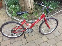 Raleigh Shugo 24 Wheel Girls Mountain Bike 15 Speed