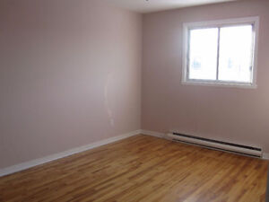Great deal on Large 3 Bedroom Apt, New Renovation in Lasalle
