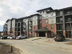 Condo for rent ( Ellerslie / Southern Springs ) - Available