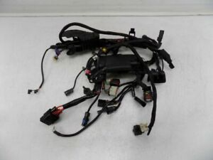 HARLEY  SPORTSTER MAIN HARNESS  69200072