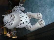 White Lion Stuffed Animal Mount Gravatt Brisbane South East Preview