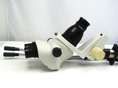 Olympus Sz61 Stereo Zoom Microscope
