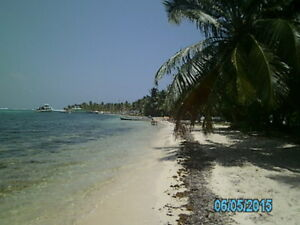 Your Piece of the Caribbean an Ocean Front Lot in Belize