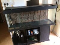 LARGE FISHTANK WITH ACCESSORIES