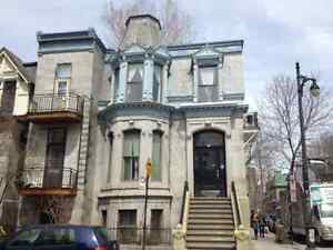 3.5 Aylmer street next to McGill Grand 3 1/2 available now