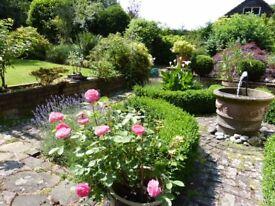 Open Garden, Summer Fete & Art Exhibition