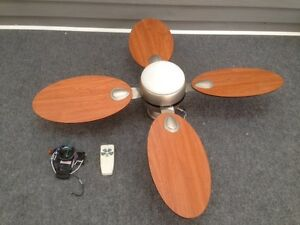 Ceiling fan and light combination